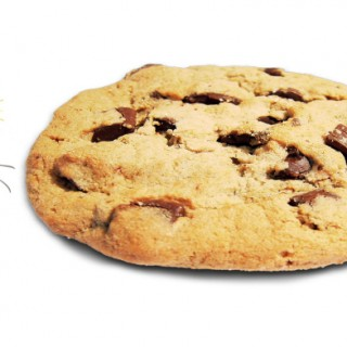 Ant with Cookie
